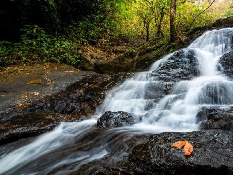 Irpu Falls - Coorg