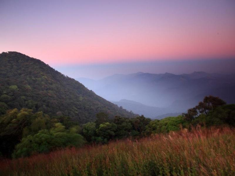 Kodachadri landscape Shimoga Division