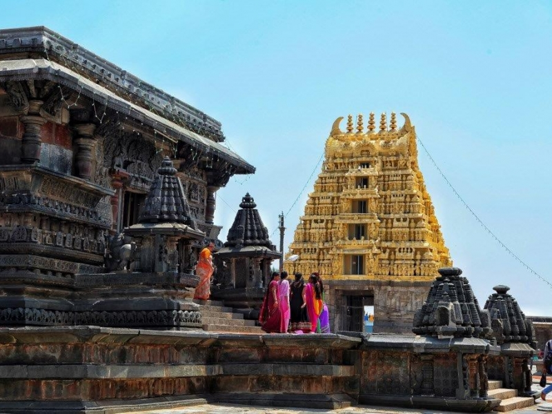 The Contrast And Variety at Belur