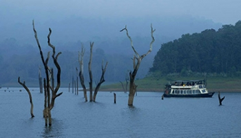Munnar-Thekkady-Kumarakom (Alleppey Backwaters)