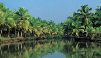 (English) Munnar-Thekkady-Kumarakom (Alleppey Backwaters)